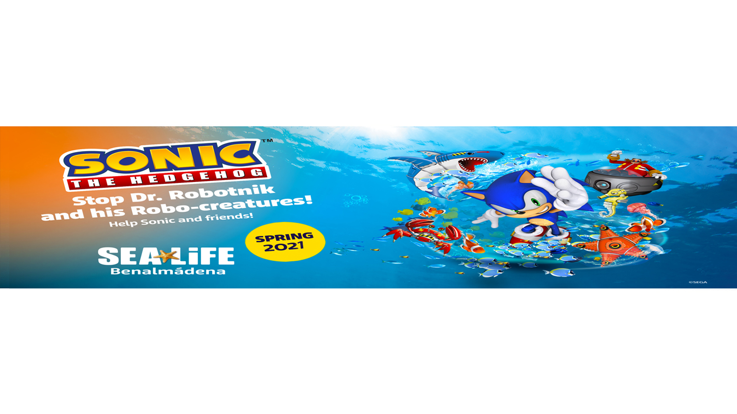Sonic the hedgehog event in SEA LIFE Benalmadena
