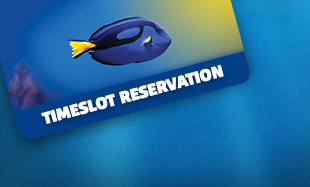 SEA LIFE Timeslot reservation