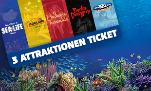 SL 3 Attraktionen Ticket 310X187