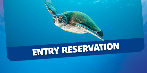 Entry Pre-book reservation