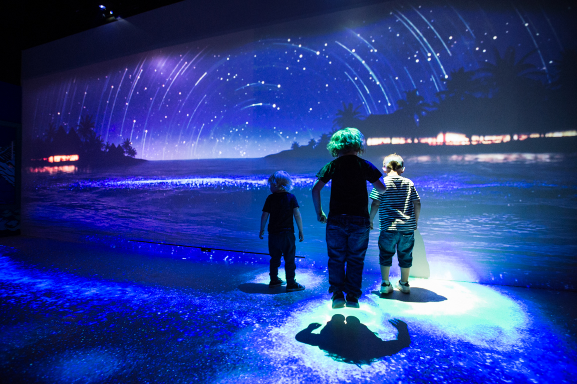 Day And Night Experience at SEA LIFE Brighton