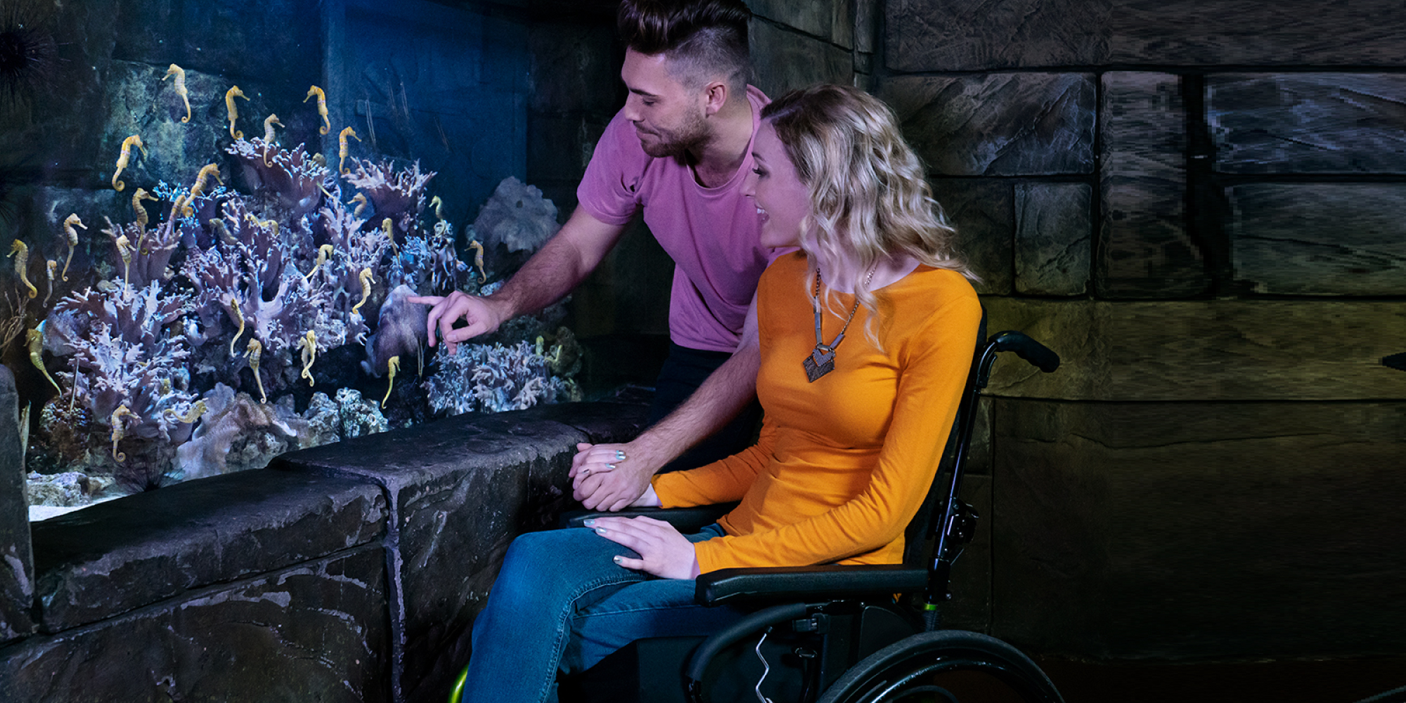 Handicap | SEA LIFE Aquarium