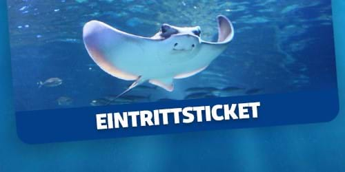 SEA LIFE Eintrittsticket