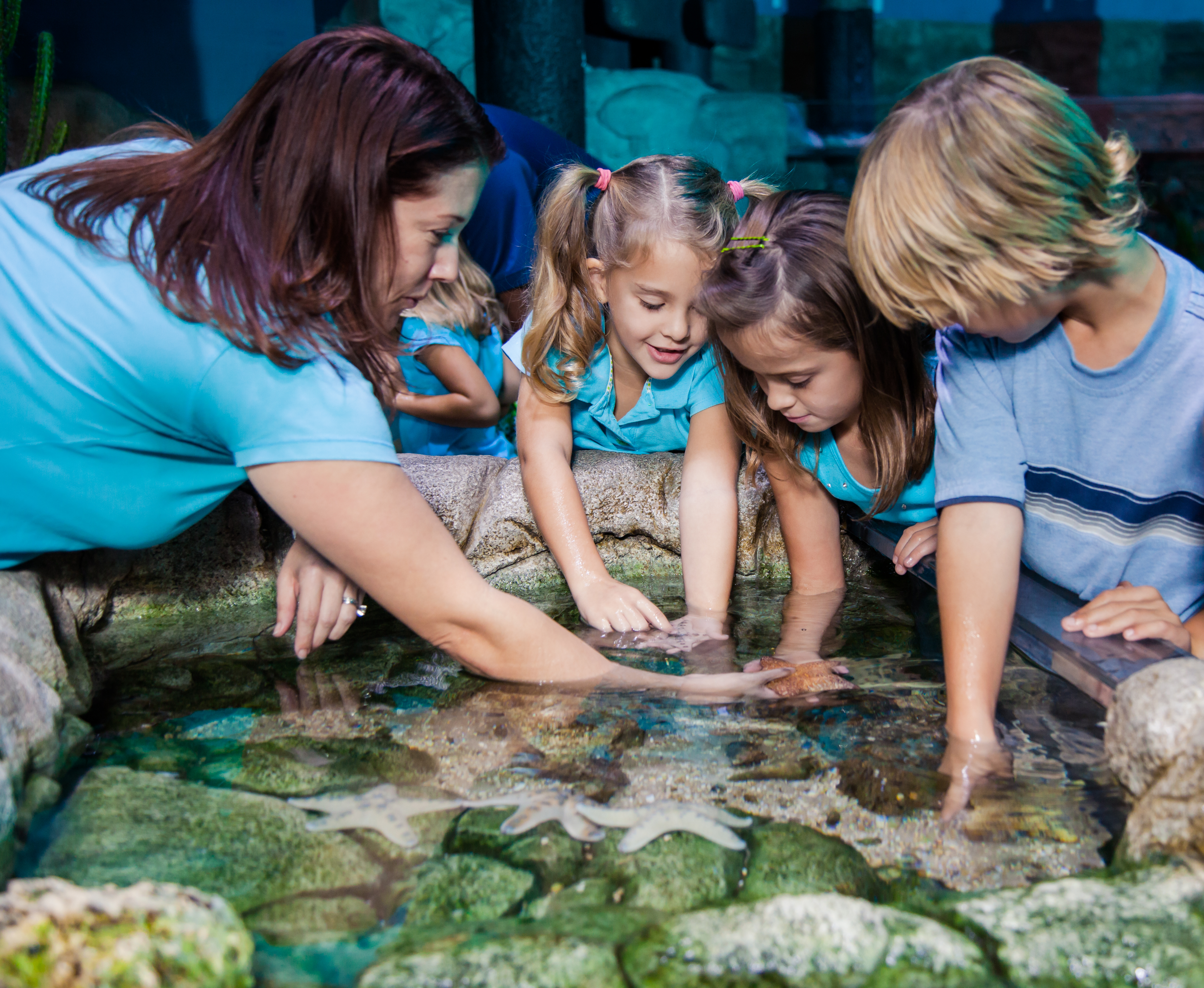 Children at a Rockpool at SEA LIFE