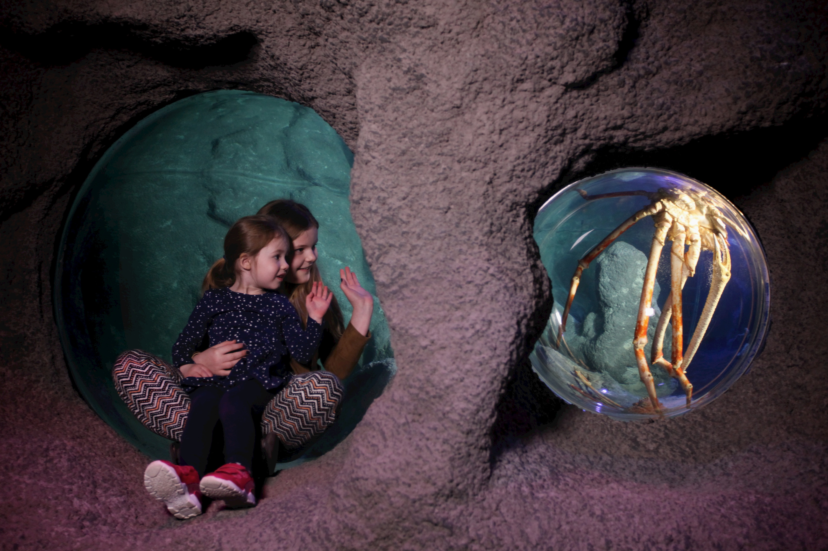 Children at the Giant Crab zone at SEA LIFE Manchester