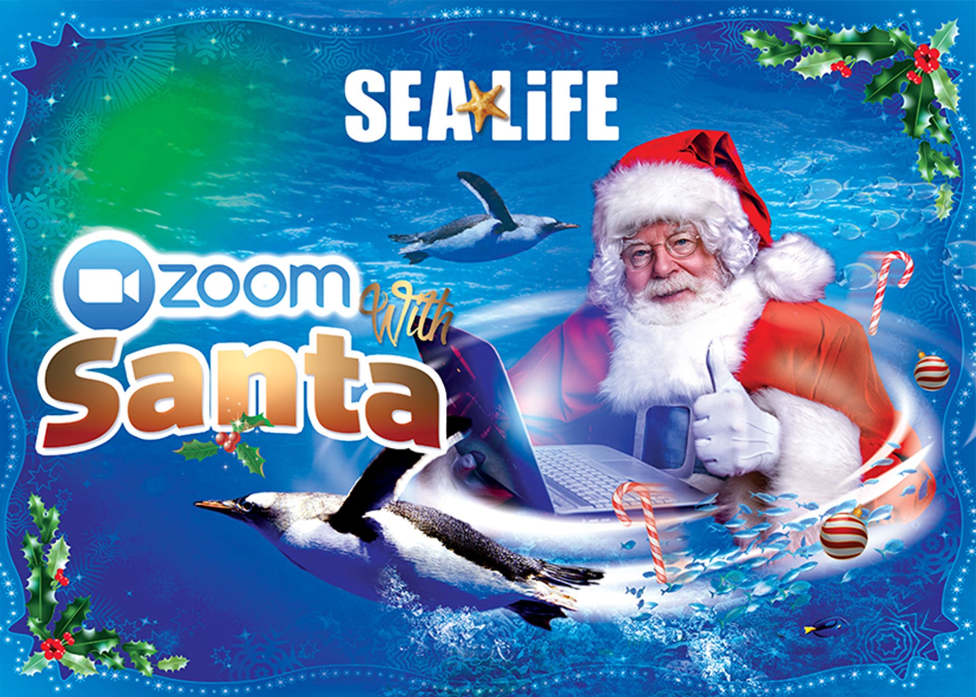 Zoom with Santa this Christmas at SEA LIFE