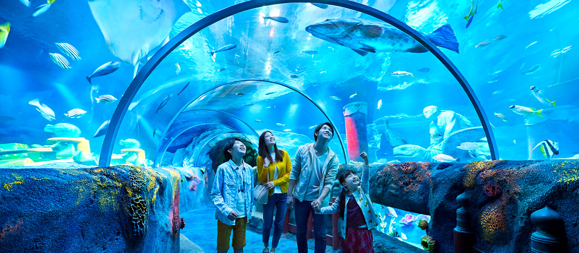Explore the aquarium