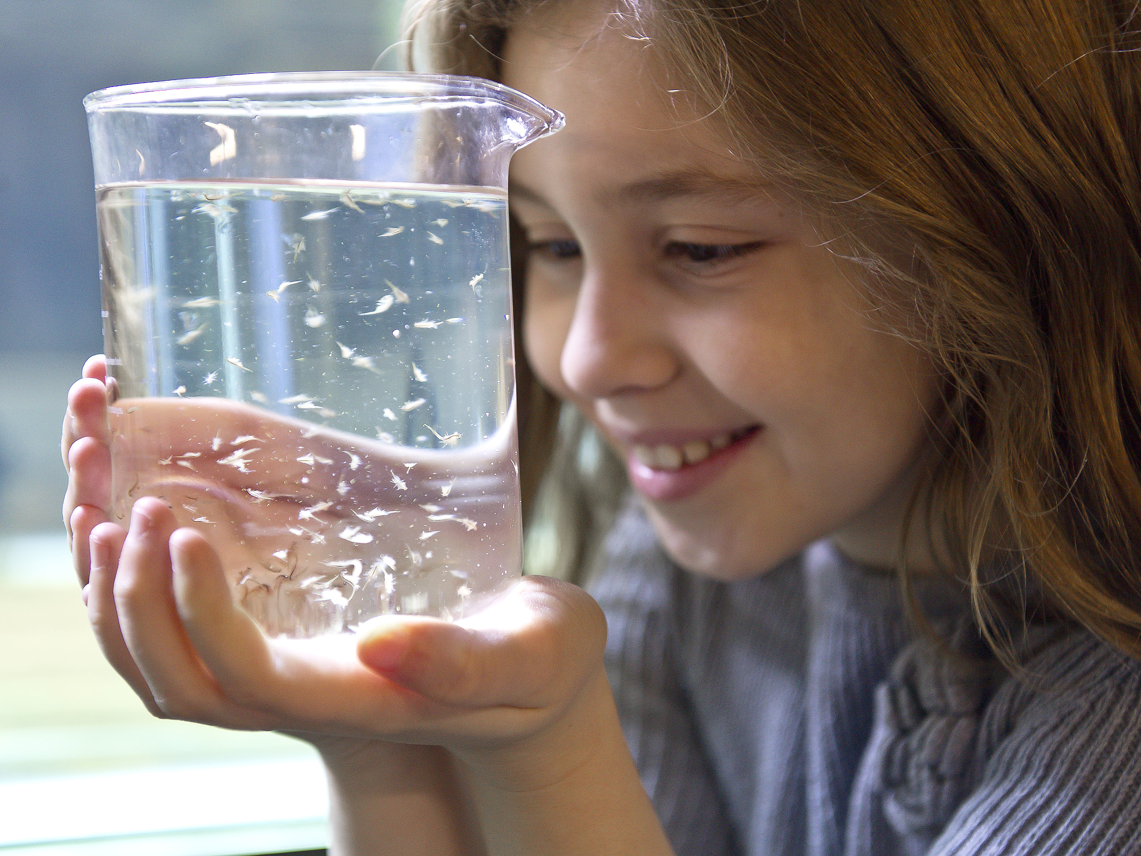 Sealife Schools Program Girlwatersample | SEA LIFE Aquarium