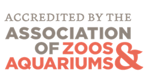 Association Of Zoos Aquariums | SEA LIFE Aquarium