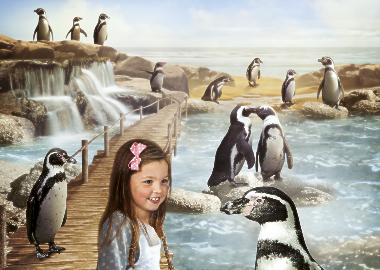 Girl visiting Penguin Island at SEA LIFE Scarborough