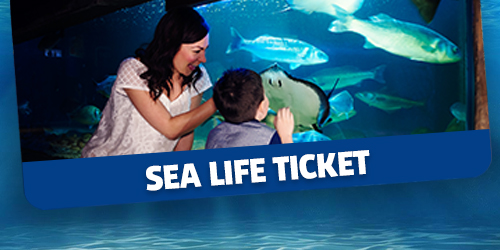Sealife Ticket