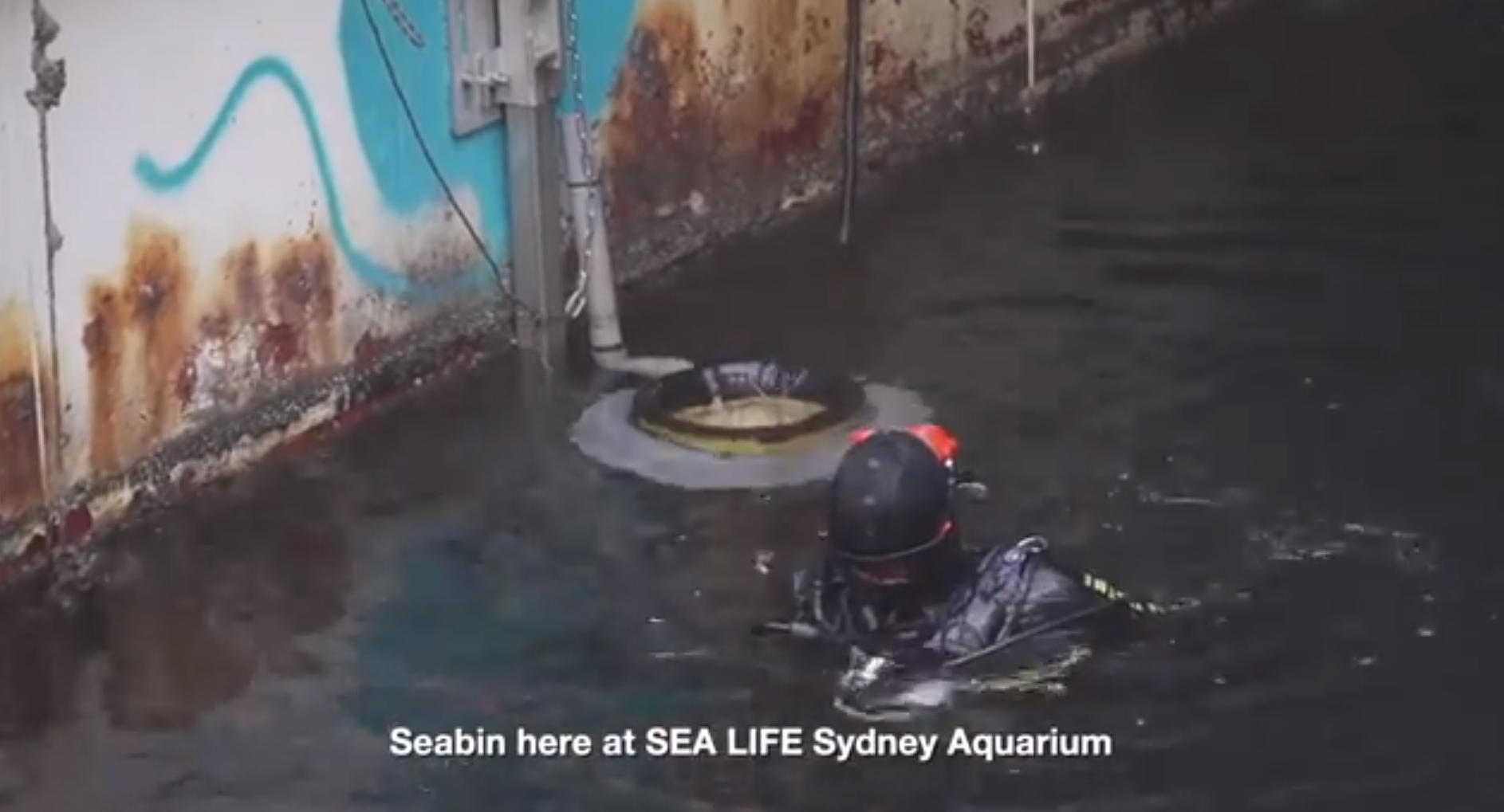 Sea Bin Video